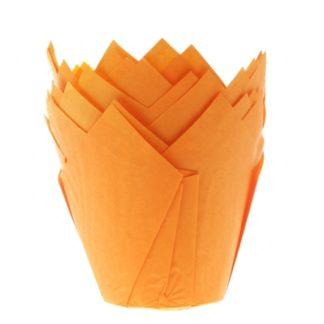 /m/u/muffin_tulp_oranje.jpg