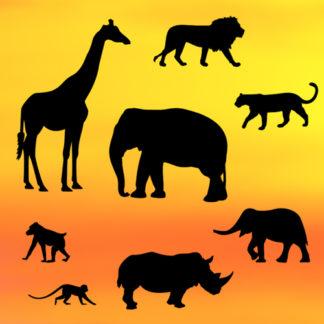 /p/a/patchwork_cutters_safari_silhouette_set.jpg